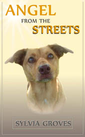 Angel From the Streets ....a rescue-dog's undying love.  Sylvia Groves.