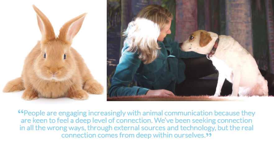 """People are engaging increasingly with animal communication because they are keen to feel a deep level of connection. We've been seeking connection in all the wrong ways, through external sources and technology, but the real connection comes from deep within ourselves."""